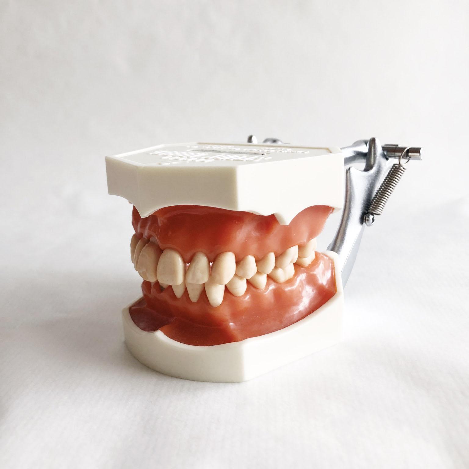 Dentalhygienikerin und Prophylaxeassistentin